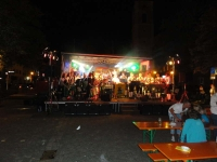 db_altstadtfest_vohenstrauss_2014__0321